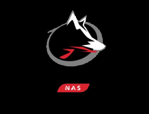 IronWolf – Neu Festplatte für den NAS-Einsatz